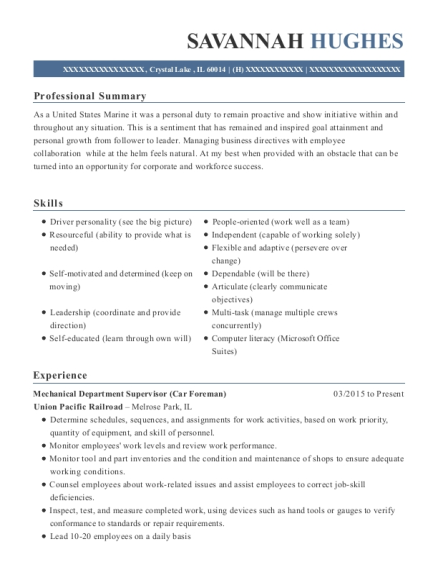 Mechanical Department Supervisor resume sample Illinois
