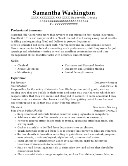 Bus Monitor resume format Illinois
