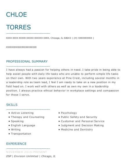DSP resume example Illinois