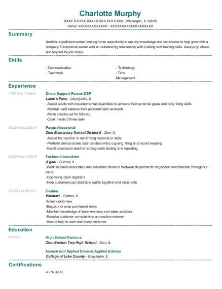 Direct Support Person DSP resume format Illinois