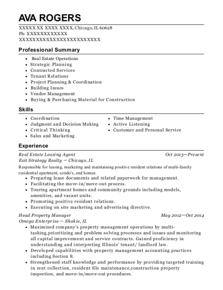 Real Estate Leasing Agent resume example Illinois