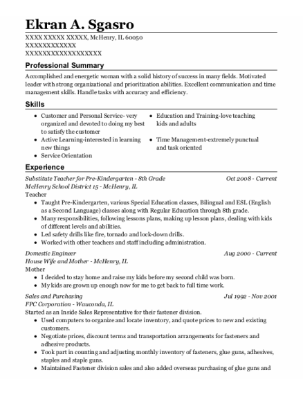 Domestic Engineer resume template Illinois