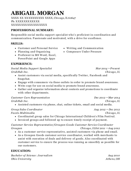 Social Media Support Specialist resume template Illinois