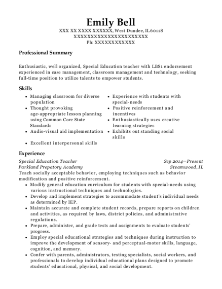 20 Best Special Education Teacher Resumes Resumehelp