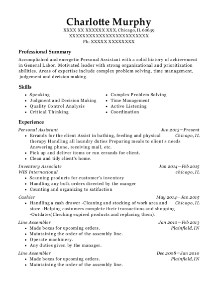 Personal Assistant resume template Illinois