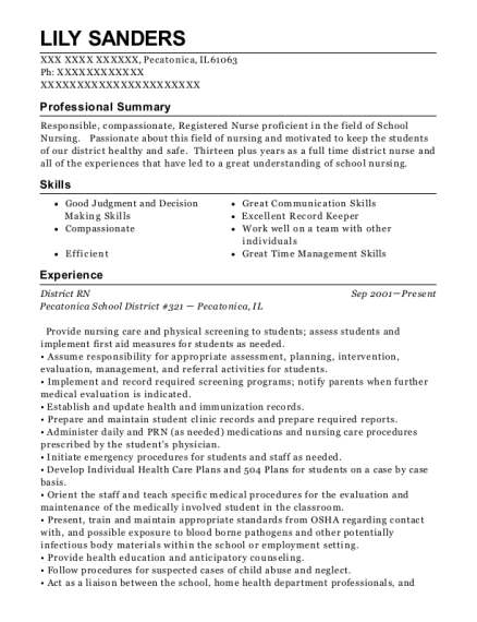 District RN resume format Illinois