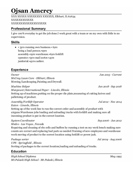 Owner resume template Illinois