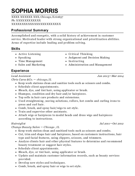 Lead Assistant resume template Illinois