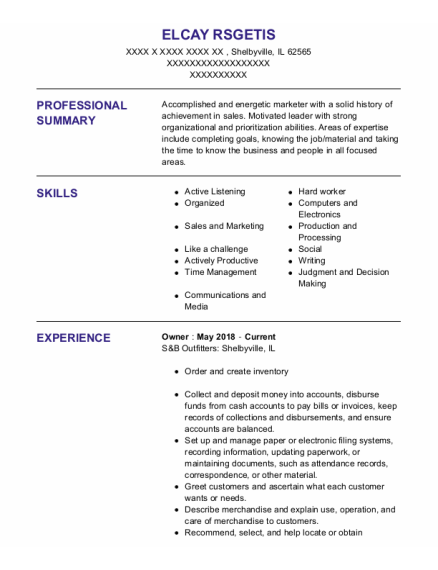Owner resume format Illinois