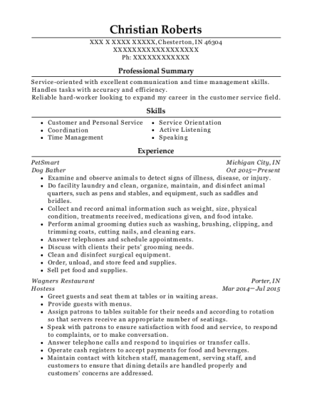Dog Bather resume template Indiana