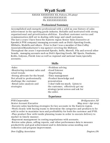 Senior Account Executive resume example Indiana