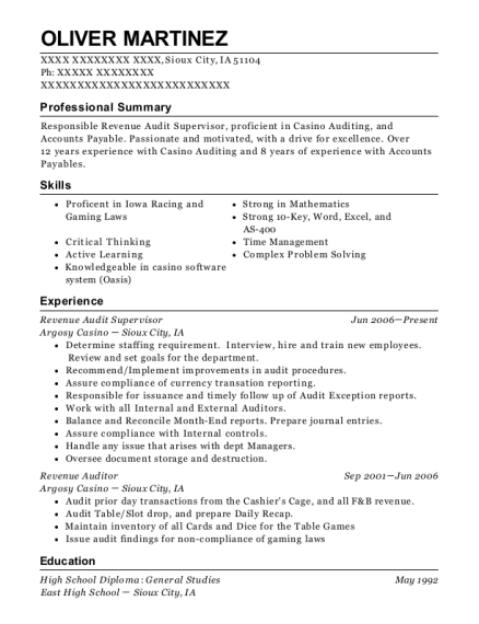 Revenue Audit Supervisor resume example Iowa