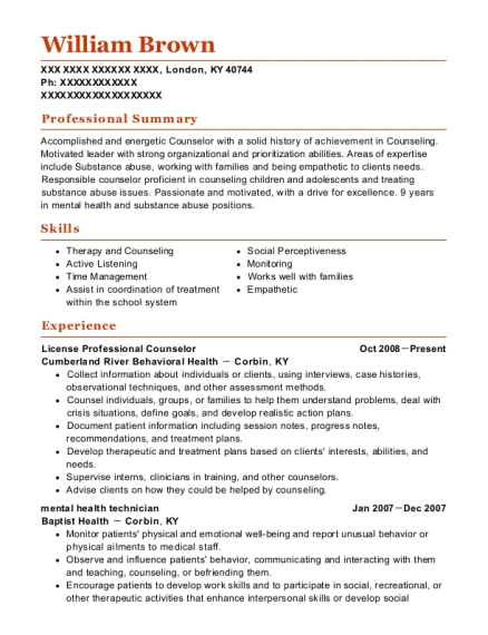 private practice licensed professional counselor resume