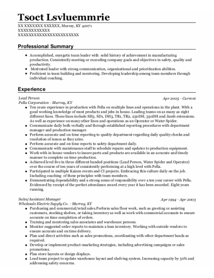 Lead Person resume example Kentucky