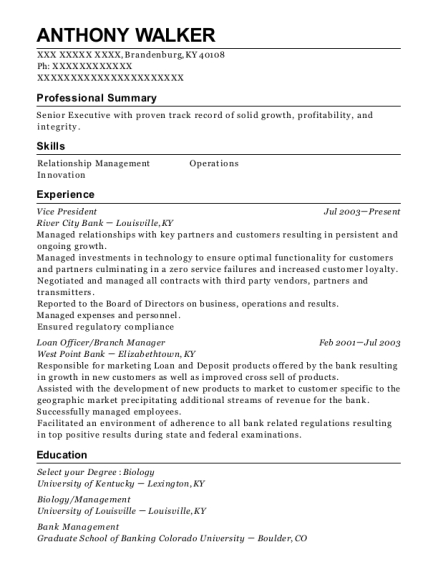 Vice President resume template Kentucky
