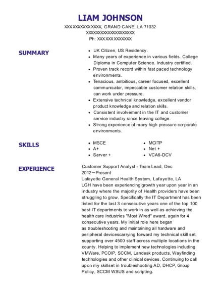 Verizon Telecommunications Customer Support Analyst Resume