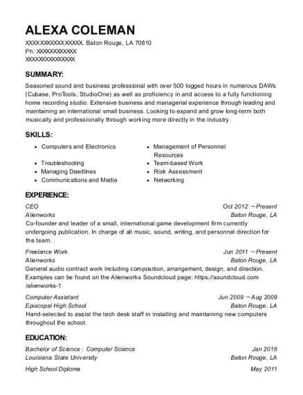 CEO resume template Louisiana