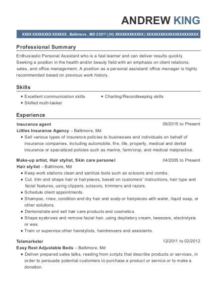 Insurance agent resume format Maryland