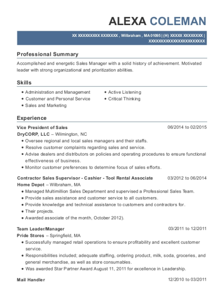 Vice President of Sales resume sample Massachusetts