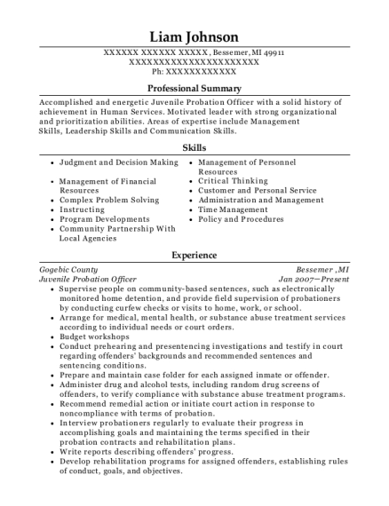 Juvenile Probation Officer resume format Michigan