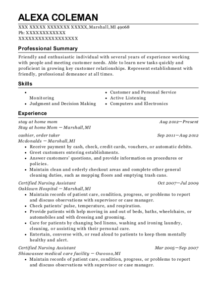 stay at home mom resume example Michigan