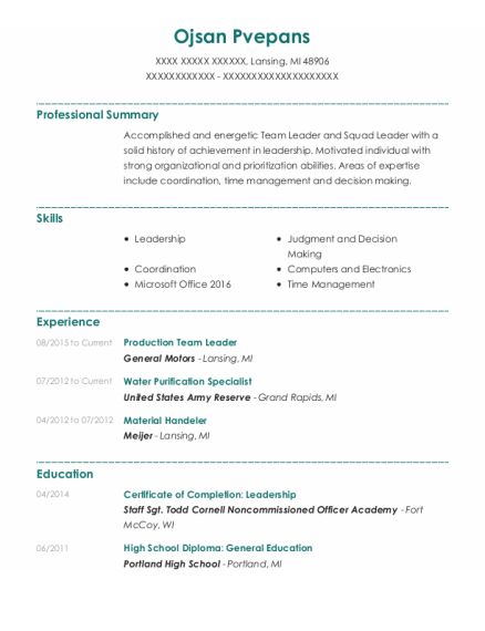 Production Team Leader resume example Michigan