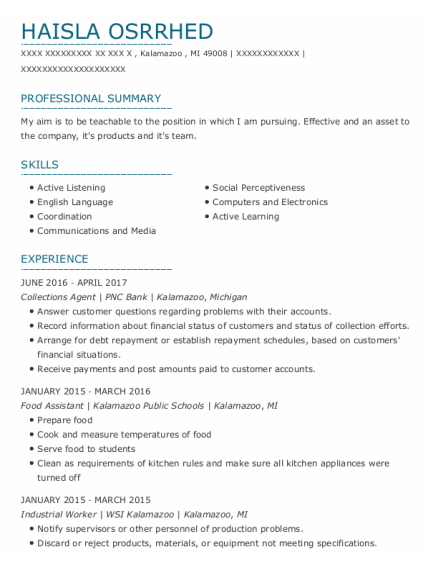 Collections Agent resume example Michigan