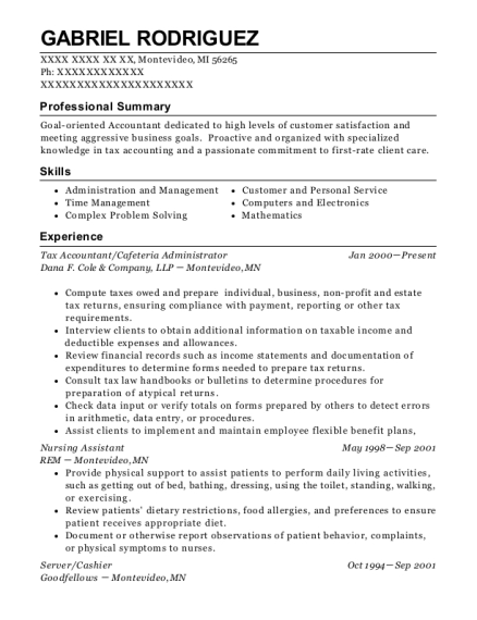 Tax Accountant resume format Michigan