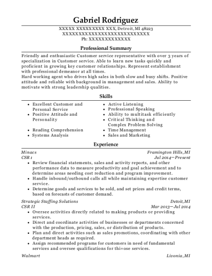CSR 1 resume template Michigan