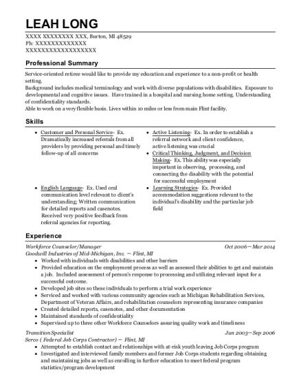 Workforce Counselor resume example Michigan