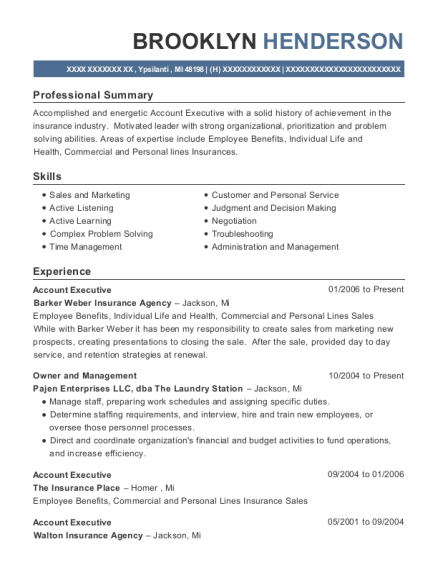 Account Executive resume template Michigan