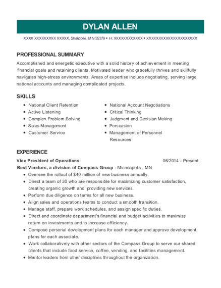 Vice President of Operations resume template Minnesota