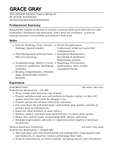 Lead Meat Cutter resume example Minnesota