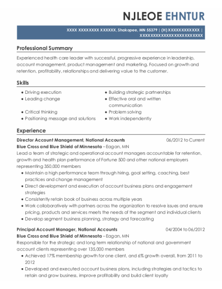Director resume example Minnesota