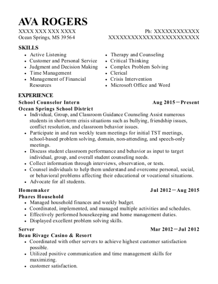 School Counselor Intern resume template Mississippi