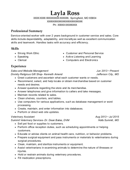 Sales and Website Management resume example Missouri