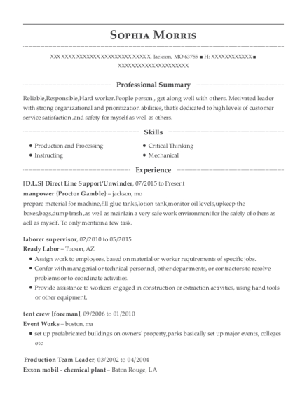 Manpower Proctor Gamble Direct Line Support Resume Sample