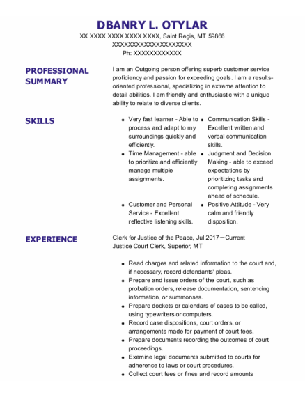 Communications Officer resume format Montana