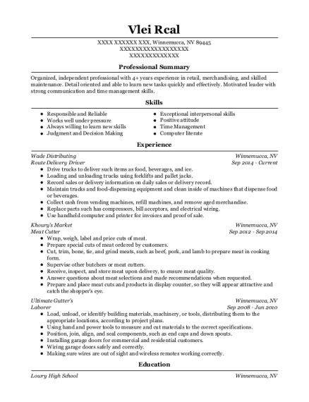 Route Delivery Driver resume sample Nevada