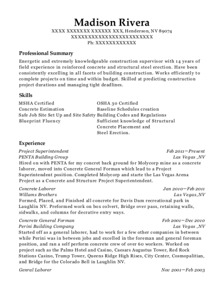 Project Superintendent resume template Nevada