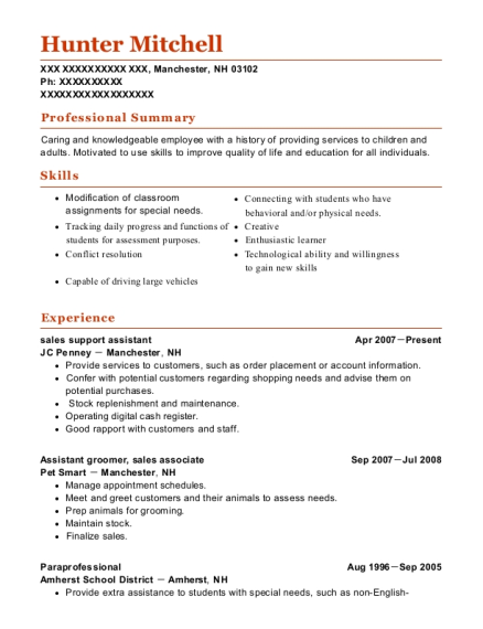 sales support assistant resume format New Hampshire