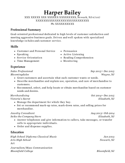 Sales Professional resume sample New Jersey