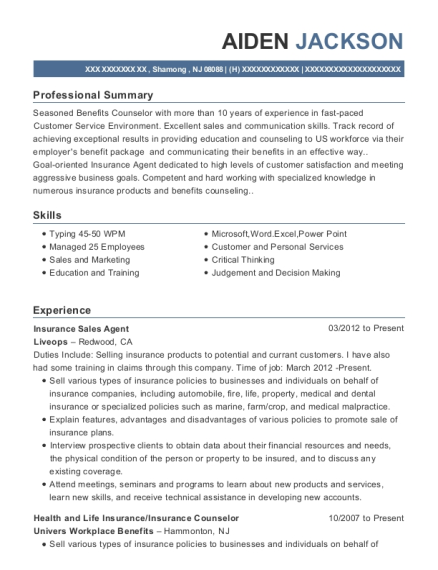 Insurance Sales Agent resume example New Jersey