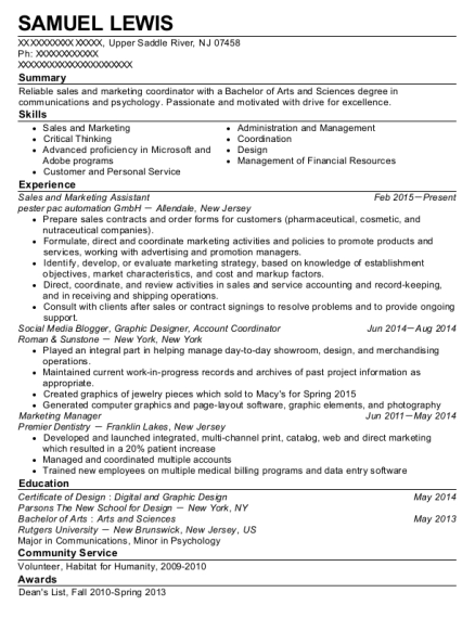 Sales and Marketing Assistant resume example New Jersey