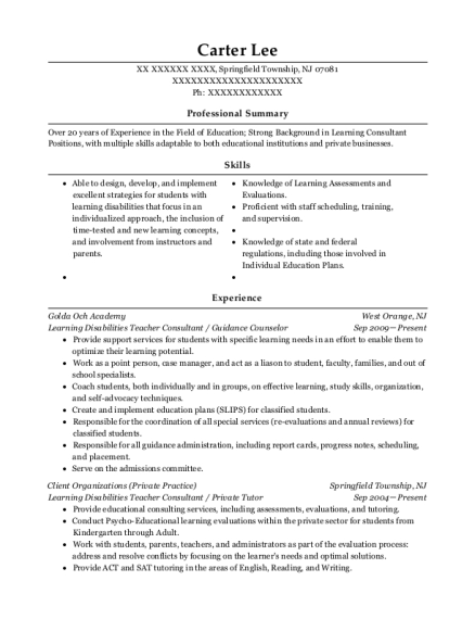 Learning Disabilities Teacher Consultant resume example New Jersey