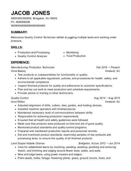 Manufacturing Production Technician resume template New Jersey