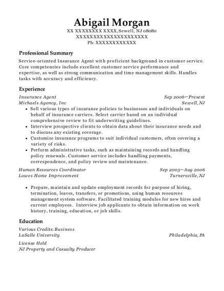 Insurance Agent resume template New Jersey