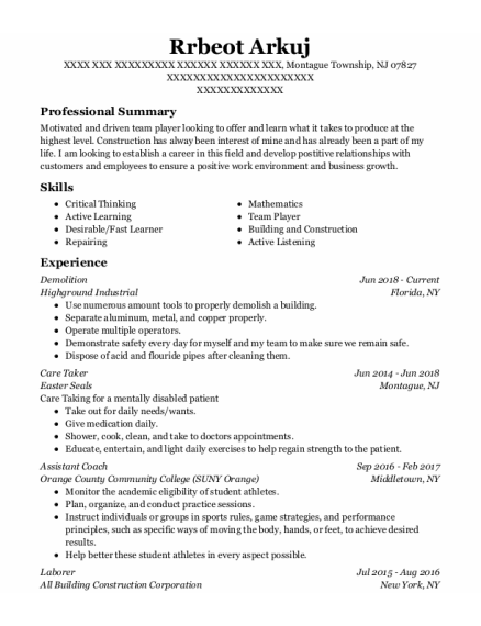 Demolition resume template New Jersey