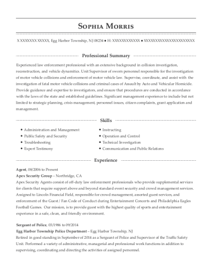 Agent resume format New Jersey