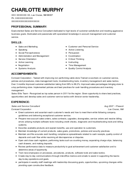 Sales and Service Consultant resume format New Mexico